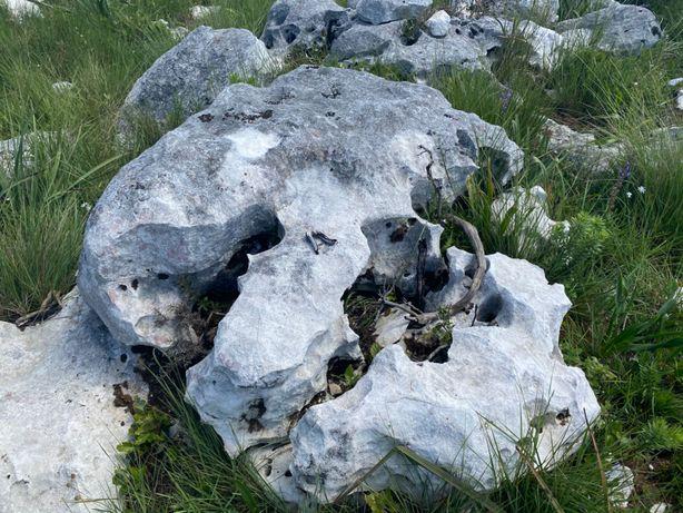 Pedra Rustica Pedras decorativas de jardim