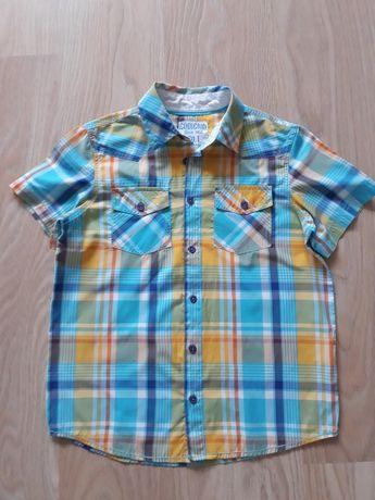 Sprzedam koszulę koszula chlopieca 146 cool club