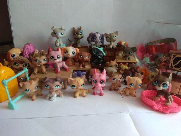 POP GWARANTOWANY MYSTERY BOX littlest pet shop lps ubranka akcesoria