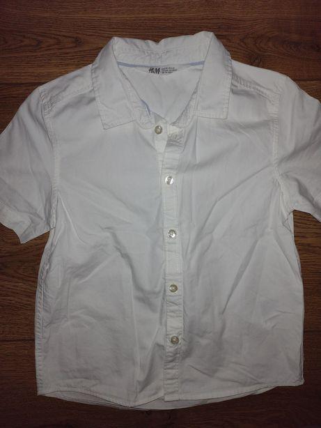 Koszula krótki rękaw HM biała 116