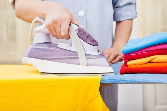Faço limpeza regular de apartamentos, passo a ferro e cozinho.