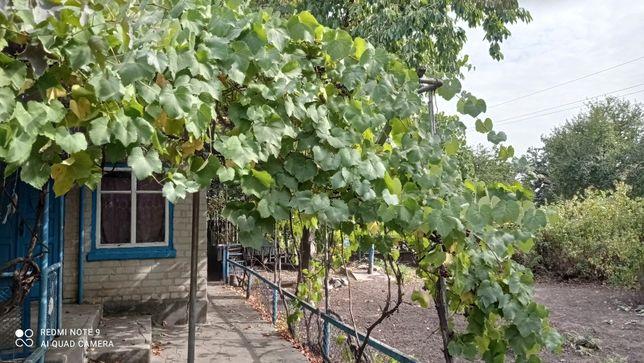 Продам дом в Михайловке, ул.Красногвардейская 68а