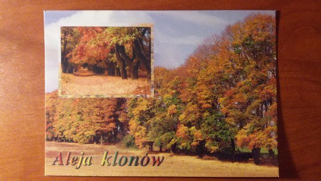 Pocztówki Częstochowa,Jura,Olsztyn,Bobolice,Ogrodzieniec duże i małe