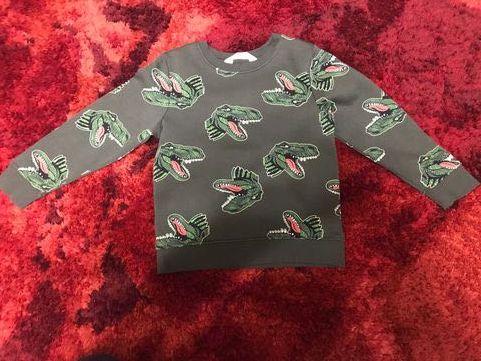 Bluzy z motywem dinozaura 116