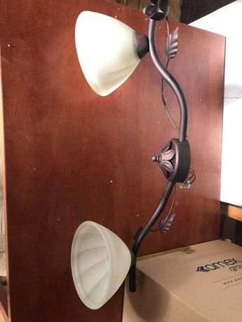 Lampa sufitowa dwuplomienna