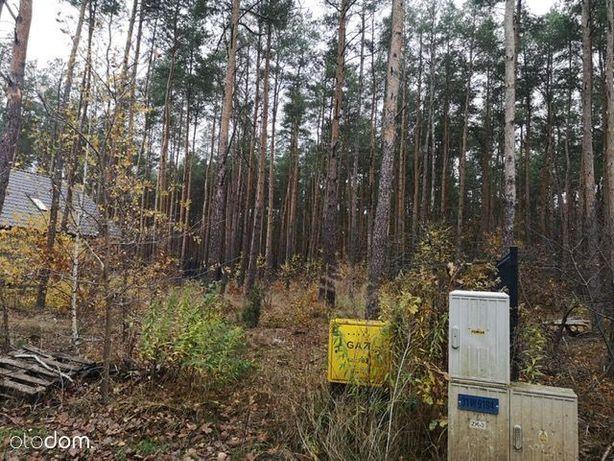 Działka leśno-budowlana