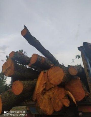 Drewno opałowe różne rodzaje