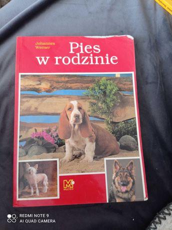 Pies w rodzinie Werner