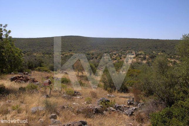Terreno Rustico Várzea da Pena Salir_8870 m2