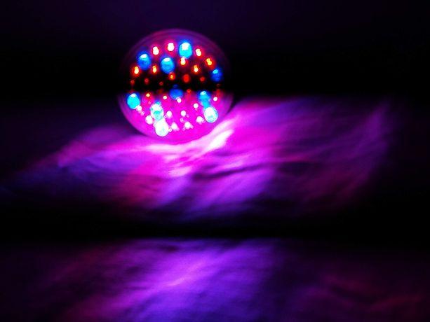 Лампа Е27 Led38 фитолампа (цветной свет)новая для роста растений