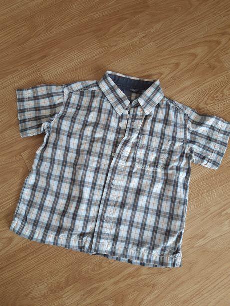 H&m 92 koszula krótki rękaw kratka