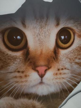 Очаровательный котик для декора наклейка