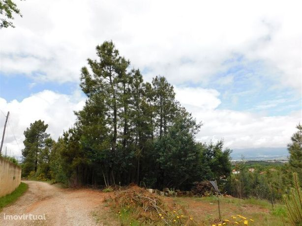 Terreno Agrícola Alcaide Fundão