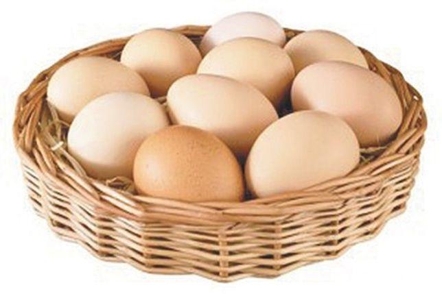 Яйця домашні