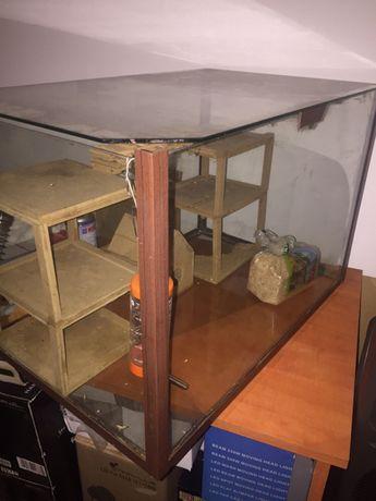 Terrario vidro com tampo