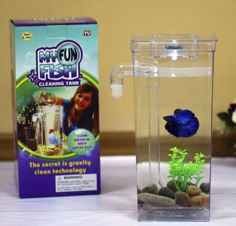 Самоочищающий мини- аквариум с подсветкой, камнями на дно и растением