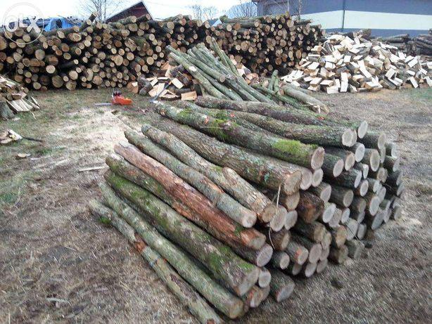 Słupy drewniane ogrodzeniowe dąb słupki 2,4m