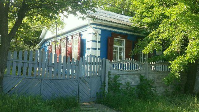 Продам дом в Александрии, двойной участок