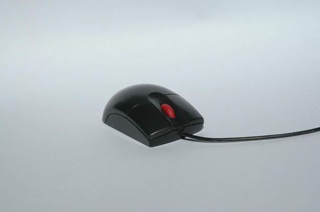 Mysz Komputerowa IBM