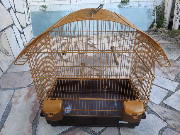Gaiola Pássaros (Aves)