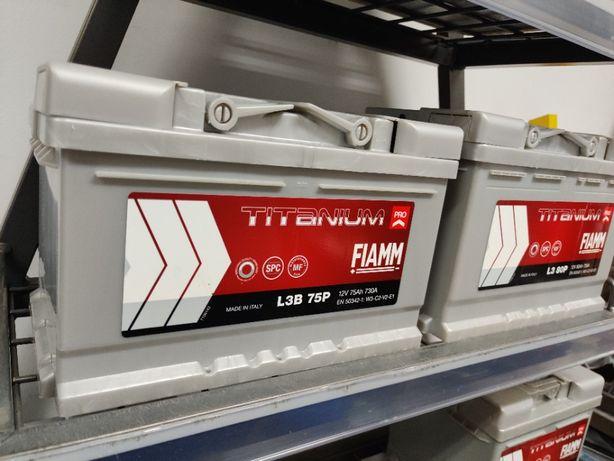 Akumulator Fiamm TITANIUM PRO 12V 75Ah 730A P+ Kraków