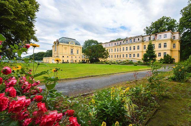 Pałac idealny m.in. pod hotel, klinikę, dom opieki...