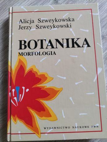 Botanika, morfologia