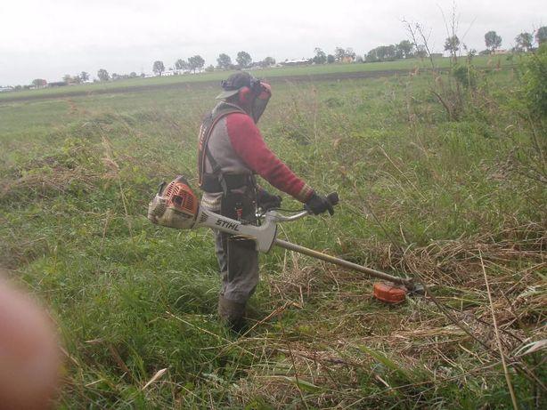 Koszenie trawy i wycinka drzew , opryski itp