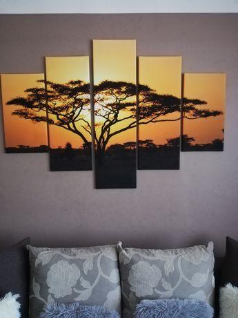 Obraz duży drzewo słońce