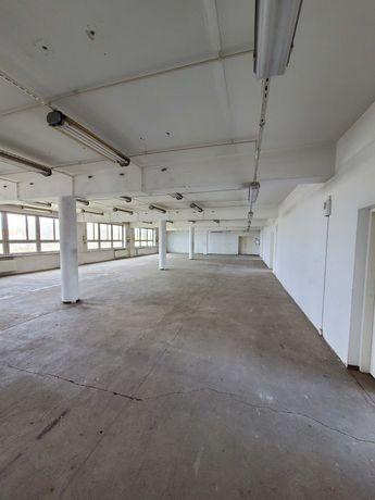 Wynajmę halę o łącznej powierzchni 1000 m2