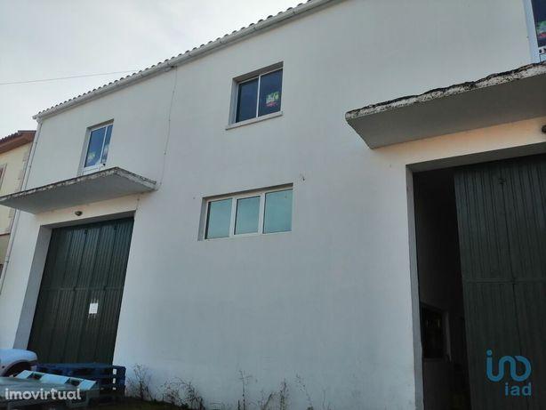 Loja - 544 m²