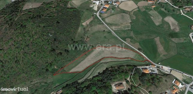 Terreno com 34.980 m2 em Borba da Montanha (Celorico de Basto)