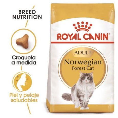 Royal Canin Feline Norwegian Forest Cat \ Bosque da Noruega 10kg