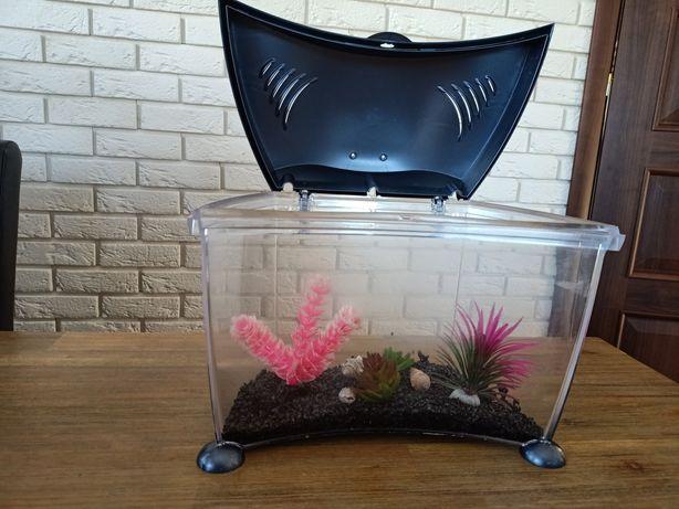 Akwarium dla bojownika rybki