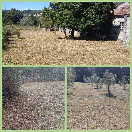 Limpeza de Terrenos, matas, Ruínas Jardins, Campos, Casas, Pinhais etc