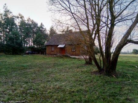 Działka z domem pod lasem
