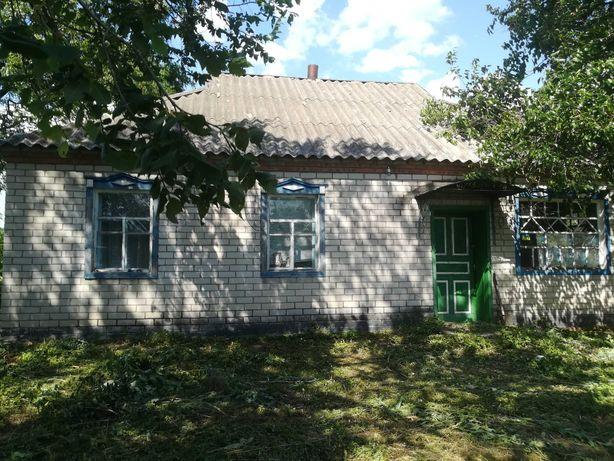 Продам дом в Полтавской области Новосанжарский р-н