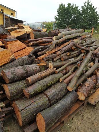 Drewno opalowe buk swierk jesion dab