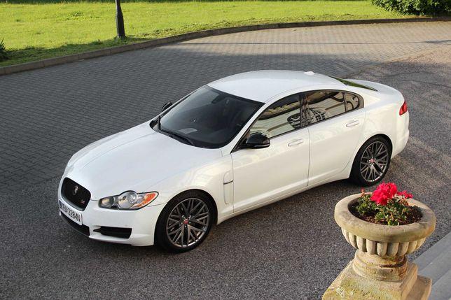 Biały Jaguar XF, piękna limuzyna, białe auto do ślubu