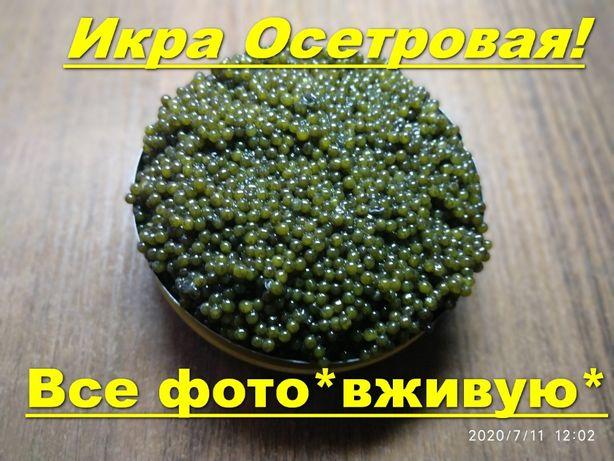 Черная икра Осетровая Premium качествa!(Дикий Осетр) за 100г