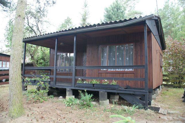 Domek drewniany do wynajęcia nad jeziorem Małe Swornegacie