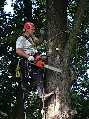 НЕ ДОРОГО.Пилка деревьев. Валка Спил деревьев. Обрезка деревьев.