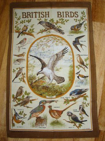 птицы Британии,UK