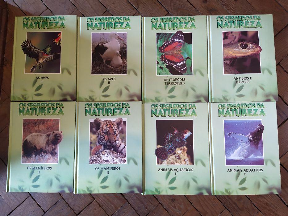 Colecção Os Segredos da Natureza Arganil - imagem 1
