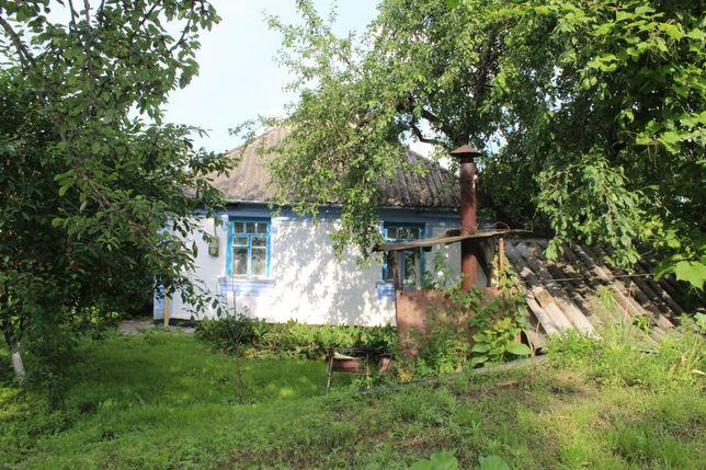 Продам дом в селе Шамраевка!