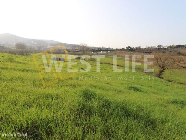 Terreno em Gradil - terreno agrícola de 11.187m2 no Gradil