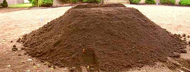Чернозем торф земля коровий навоз перегной сыпец плодородная грунт