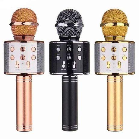 Портативний мікрофон -караоке з динаміком Wster