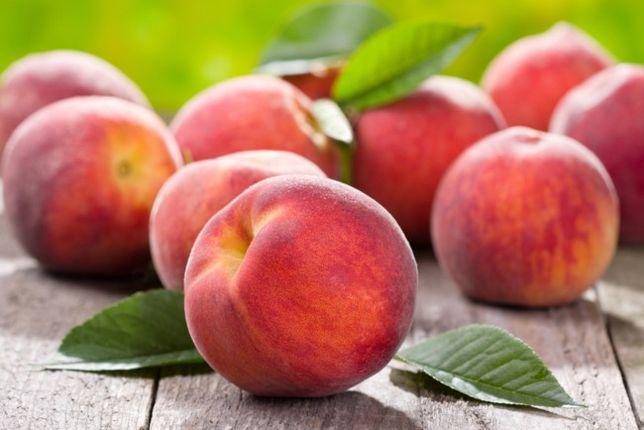 Саженцы персика Саджанці персика