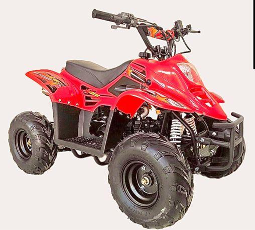 Mini moto4 110cc 4T - Envio para todo lado